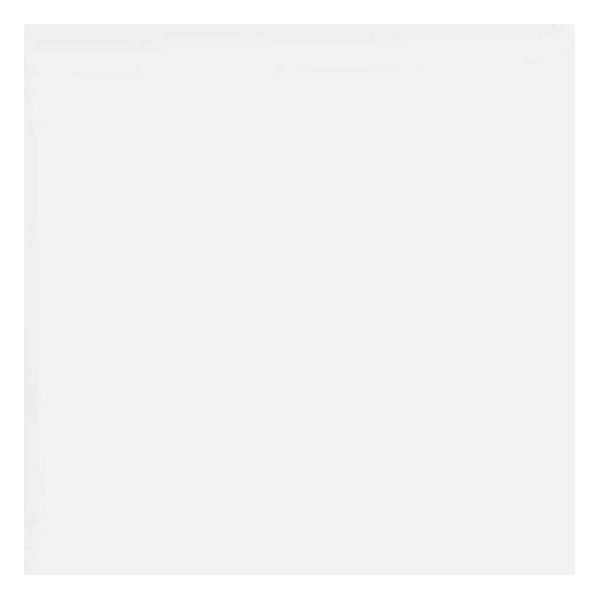 Gres Porcelánico Nieve Blanco Mate - 61X61 cm - 1.48 m2