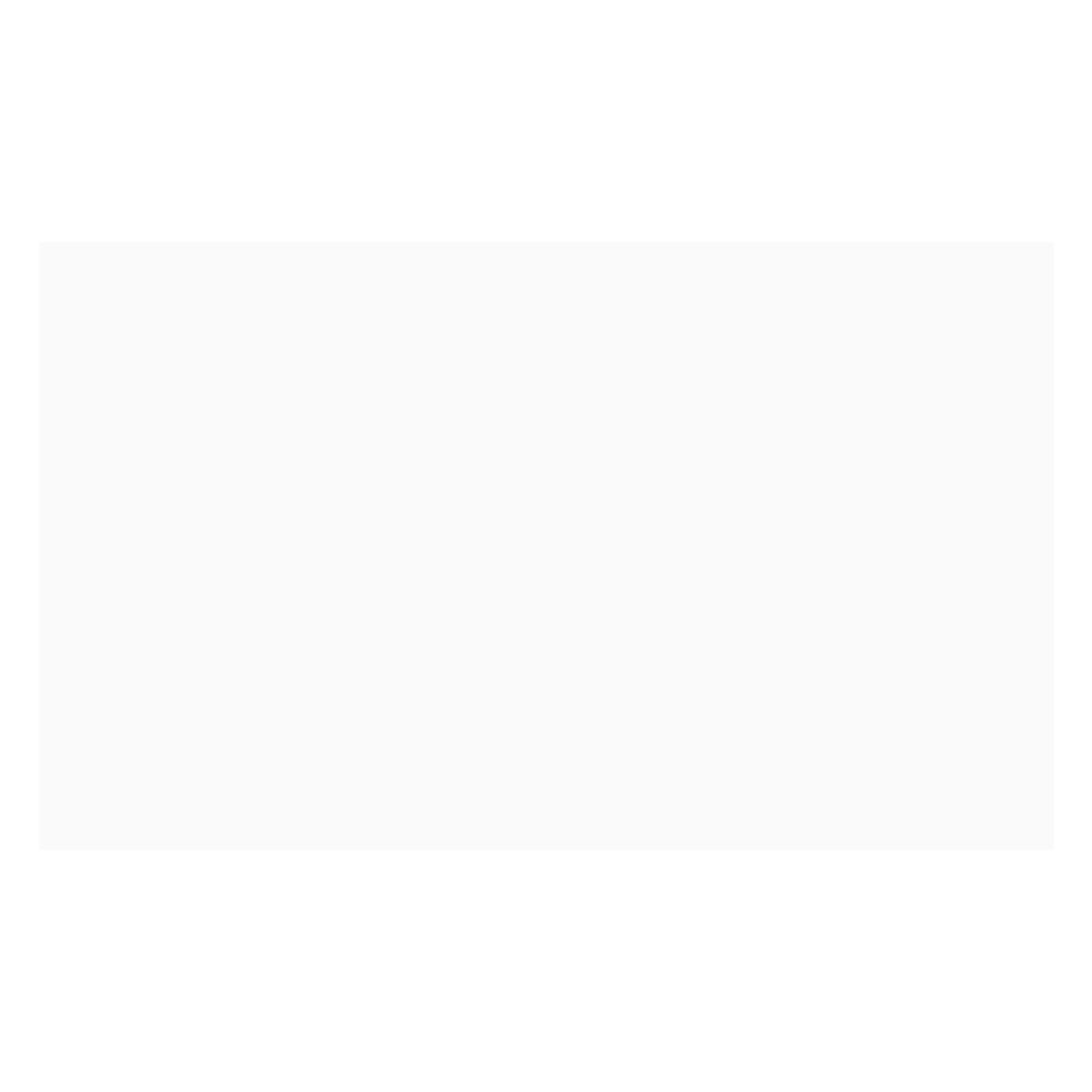 Mayólica Blanco Brillante - 24X40 cm - 1.76 m2